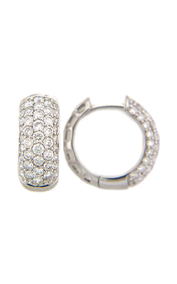 Dilamani Earring AE79017D-200W product image
